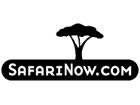 Safari Now.com Member